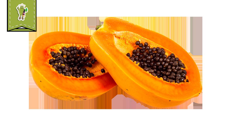 Papaya - Frhomimex