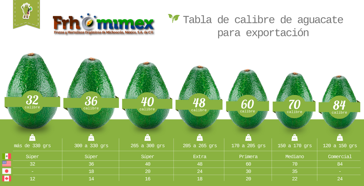 Aguacate Hass Orgánico - Frhomimex